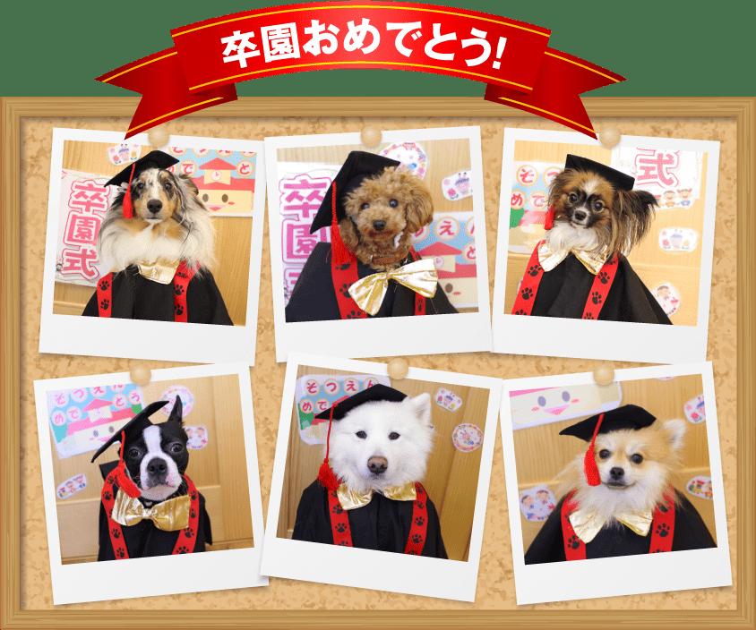 卒園おめでとう!